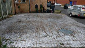 White Algae Spot Removal Carlisle