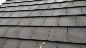 Proffesional Roof Cleaning & Sealing