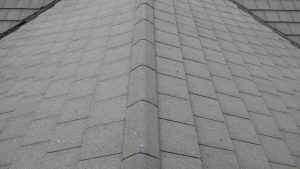 After Roof Cleaning Wigton