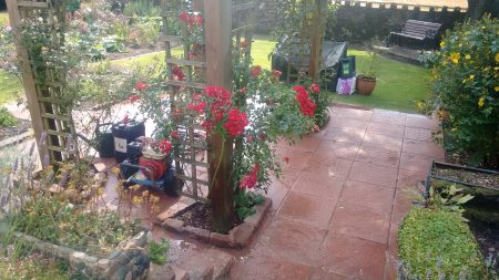 Patio Cleaning Penrith