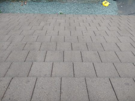 Roof Moss Removal Windermere & Kendal