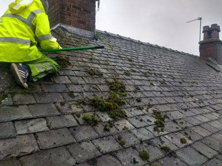 Moss Removal in Cumbria