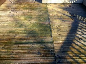 Fatigued Decking with Algae Stains